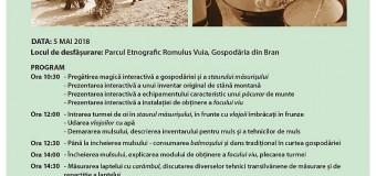 """ÎMPREUNIȘUL-MĂSURIȘUL OILOR ÎN TRANSILVANIA TRADIȚIONALĂ, RECONSTITUIT ÎN PARCUL ETNOGRAFIC """"ROMULUS VUIA"""""""