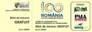 BIlete Centenar MET-page-003
