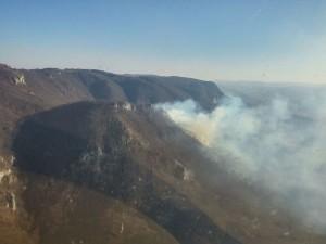 Cluj24h.ro- Incendiu Alba