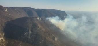 Incendiu de pădure în Munții Apuseni. Unitățile Speciale de Aviație Cluj-Napoca s-au implicat pentru stingerea incendiului