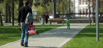 Primăria Cluj-Napoca a anunţat câştigătorii licitaţiei pentru salubrizare stradală şi deszăpezire