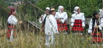 """[Foto&VIDEO] În Parcul Etnografic """"Romulus Vuia"""" s-a secerat ca în Maramureş"""