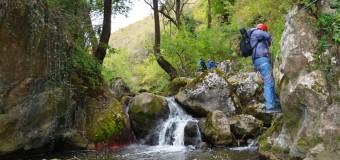 Cheile Turenilor, un nou obiectiv turistic de mare interes, deschis de azi pentru vizitare