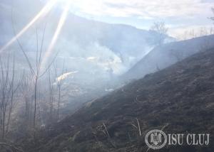 Incendii vegetatie uscata 2