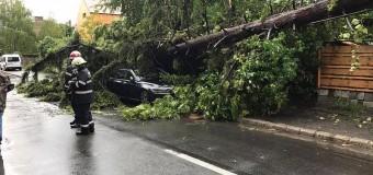 Furtuna de ieri a făcut probleme în mai multe localități din județ. Iată ce intervenții a avut ISU Cluj