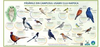 Trei ani de studiu pentru inventarierea păsărilor din campusul USAMV Cluj-Napoca. 15 liceeni cu deficiențe de auz, invitați la lansarea panourilor cu peste 50 de  specii de păsări.