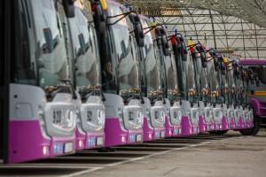 autobuze 3