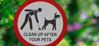 Floreștiul are regulament pentru deținerea și accesul persoanelor însoțite de câini în comună