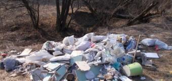 """De râsul curcilor: Construiește în Florești dar deșeurile le depozitează în Făget pentru că are """"pile"""""""
