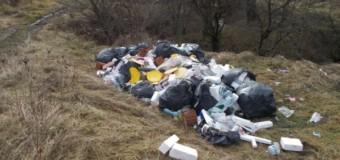 Cluj-Napoca: O nouă depozitare ilegală depistată de Poliția Locală