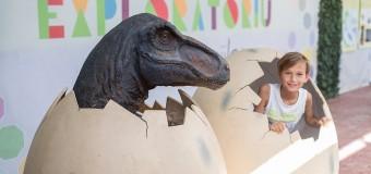 Ultimii dinozauri din Transilvania ajung în Apahida