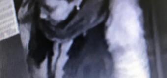 APEL PUBLIC: Polițiștii caută o femeie care a înșelat un vârstnic prin metoda 'Accidentul'.