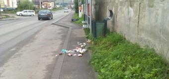 Incredibil! A vrut să intre în coşul de gunoi, şi-a dat seama că nu încape, dar a lăsat deşeurile pe trotuar