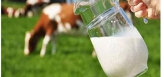 Ce să fac, doctore?  Află despre alergia la proteinele laptelui de vaca