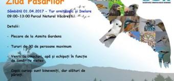 Ziua Păsărilor, sărbătorită la Cluj-Napoca. Vezi ce evenimente a pregătit Societatea Ornitologică Română