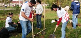 Ziua Mondială a Pământului, marcată şi la Floreşti prin plantări de pomi