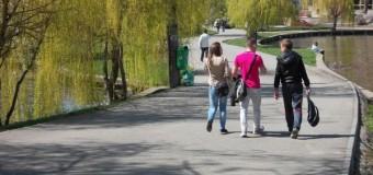 Primăria Cluj-Napoca anunță demararea acțiunii de deratizare pe domeniul public