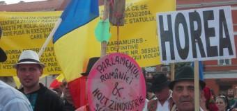 [Foto&Video] Protest de amploare la Cluj împotriva defrişărilor. Mii de persoane au protestat în marş.