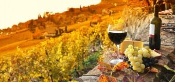 Festivalul internațional de vin RO–Wine, ajunge pentru prima dată la Cluj-Napoca