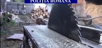 Material lemnos, în valoare de peste 1.000.000 de lei , confiscat valoric în urma unui control de specialitate