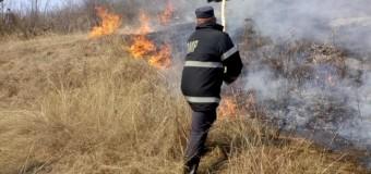 Zeci de incendii vegetale în ultima perioadă la Cluj.