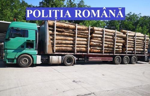 material lemnos, Cluj24h, știri din cluj