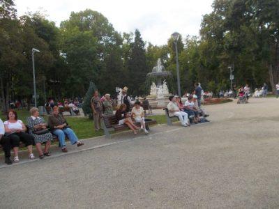 Deratizarea domeniului public: o nouă acțiune va debuta mâine. Administrația locală îndeamnă cetățenii să deratizeze și domeniul privat. Cluj24h.ro
